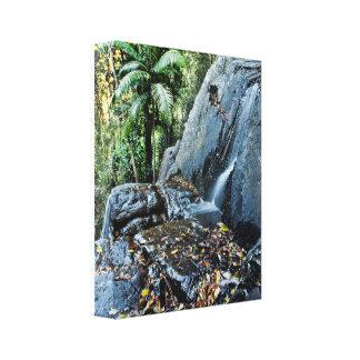 Cascada gloriosa Brisbane Queensland del soporte Impresión En Lienzo