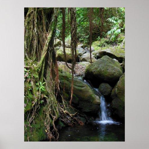 Cascada hawaiana póster