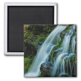 Cascada hermosa de la cascada imán cuadrado
