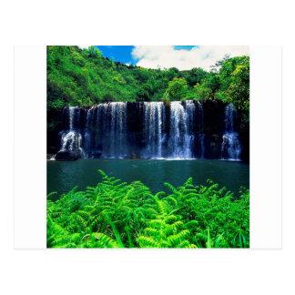 Cascada Kauai aislado Postales