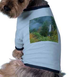 Cascada Latourell Columbia Camisa De Mascota