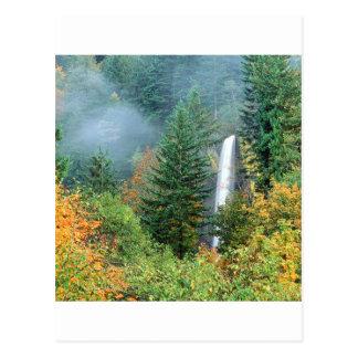 Cascada Latourell Columbia Tarjetas Postales