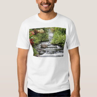 Cascada Polera