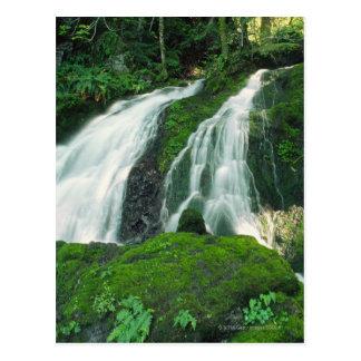 Cascada que cae sobre las rocas cubiertas de musgo postales
