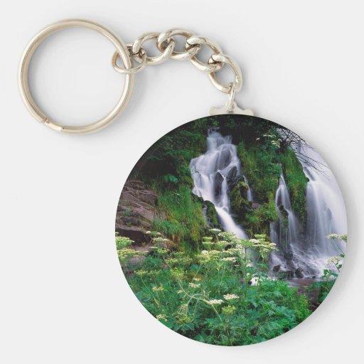 Cascada que conecta en cascada Umpqua Llavero Personalizado