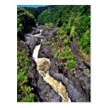 Cascada rápida del río a través de la garganta postal