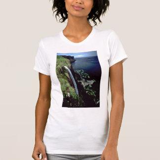Cascada sobre los acantilados de la isla de Skye, Playera