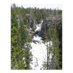 Cascada Tarjetones