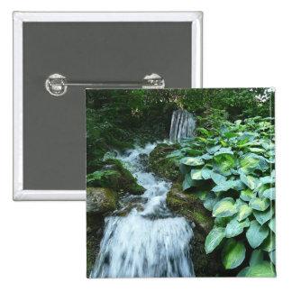 Cascada y Hostas Pins