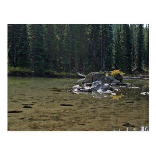Cascadas de Oregon, lago devils Tarjetas Postales