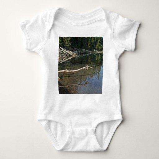 Cascadas del lago elk, Oregon Camisas