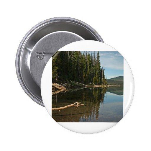 Cascadas del lago elk, Oregon Pin