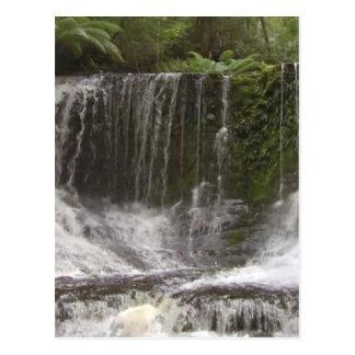 Cascadas del oasis en Tasmania al sur de Australia Tarjeta Postal