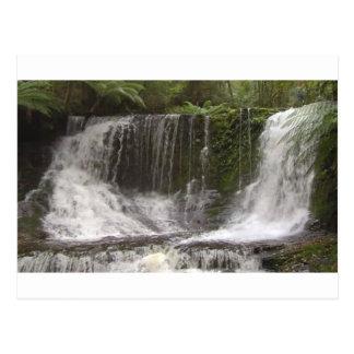 Cascadas del oasis en Tasmania al sur de Australia Tarjetas Postales