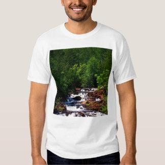 Cascadas del río de Lester Playeras