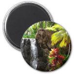 Cascadas hawaianas iman de frigorífico