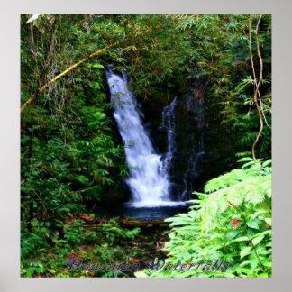 Cascadas hawaianas póster