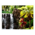 Cascadas hawaianas tarjeta postal
