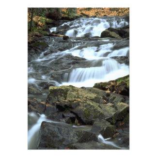Cascadas, parque de Gatineau, Quebec, Canadá Invitación Personalizada