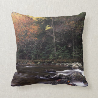 Cascade and Fall Colors Throw Pillow