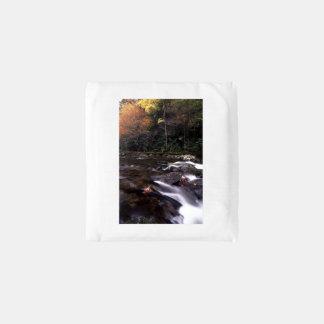 Cascade and Fall Colors Reusable Bag