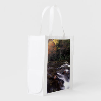 Cascade and Fall Colors Reusable Grocery Bag