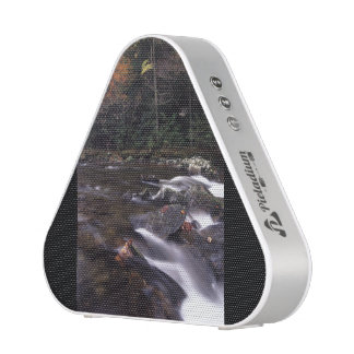 Cascade and Fall Colors Speaker