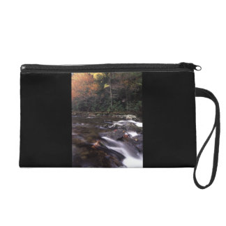 Cascade and Fall Colors Wristlet Purse