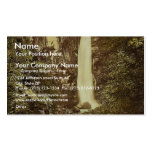 Cascade de Dare rare Photochrom Business Cards