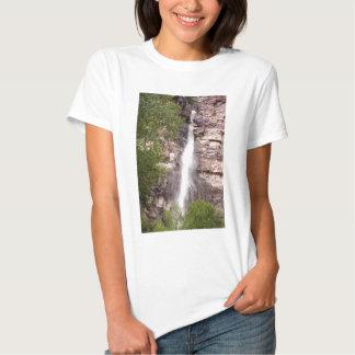 Cascade Falls 02 T Shirt