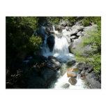 Cascade Falls at Yosemite National Park Postcard