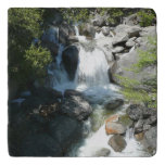 Cascade Falls at Yosemite National Park Trivet