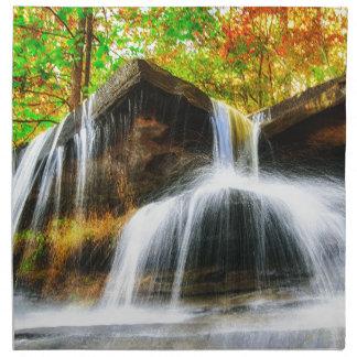 Cascade Falls Napkin