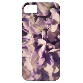 Cascade iPhone SE/5/5s Case