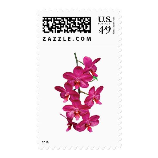 Cascade Magenta Orchids Postage
