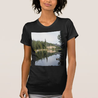 Cascade Mountains, Devils Lake, Oregon T-Shirt
