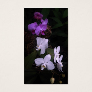 cascade of orchids business card