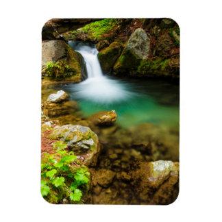Cascade on Hare Creek, California Rectangular Photo Magnet