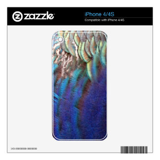 Cascading Blue Peacock Feathers Skin For The iPhone 4