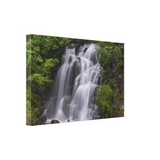 Cascading Falls Canvas Print