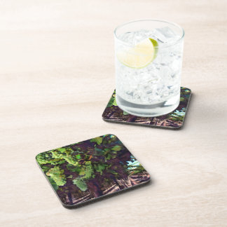 Cascading Grapes Coaster