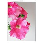 Cascading Pink Petunias Greeting Card