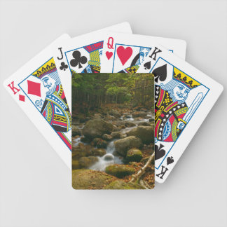 Cascading Stream Bicycle Playing Cards