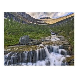 Cascading stream, Glacier National Park, Postcard