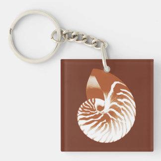 Cáscara del nautilus - marrón y blanco del cacao llaveros