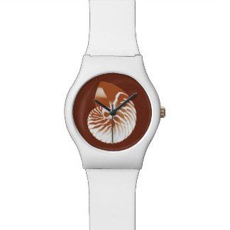 Cáscara del nautilus - marrón y blanco del cacao relojes