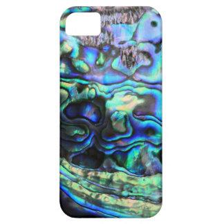 Cáscara del paua del olmo iPhone 5 carcasa