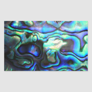 Cáscara del paua del olmo rectangular pegatinas