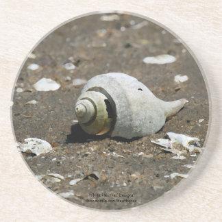 Cáscara en la playa - práctico de costa del bucino posavasos de arenisca