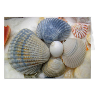 Cáscaras azules bonitas del berberecho tarjeta pequeña